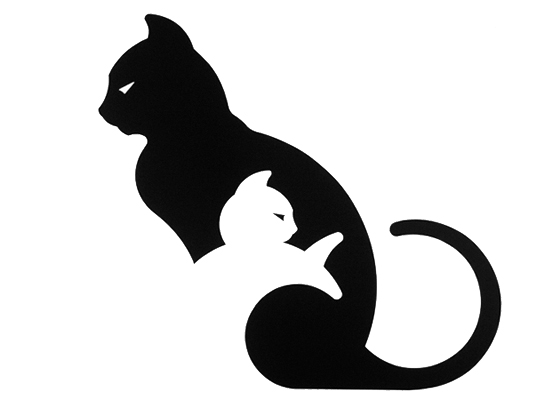 symbolism in the black cat 2018-1-15 many people are superstitous of black cats, seemingly - having to do with witch's and the occult.